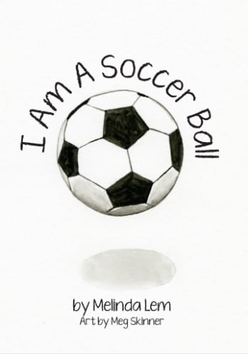 Meg Skinner Cover Art Library For All Soccer Ball