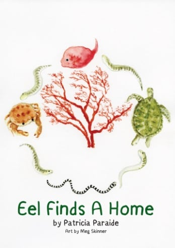 Meg Skinner Cover Art Library For All Eel Finds A Home