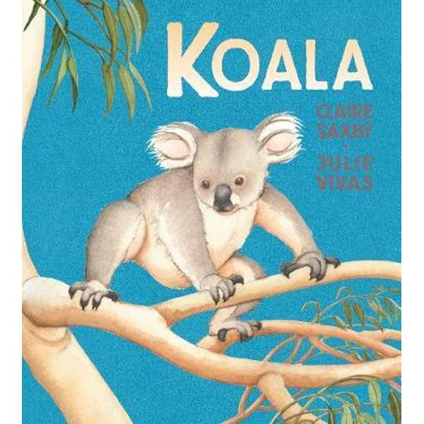 Claire Saxby koala cover